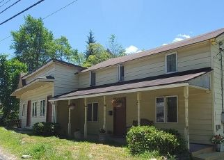 Short Sale in Parksville 12768 MAIN ST - Property ID: 6337903919